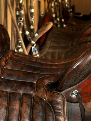 The Peruvian saddle