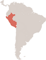 Daco_2520477.png