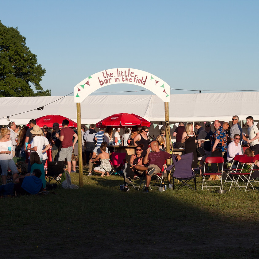 The Little Festival in the Field