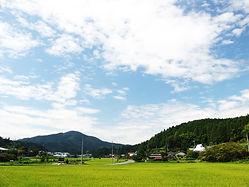天野風景 (2).jpg