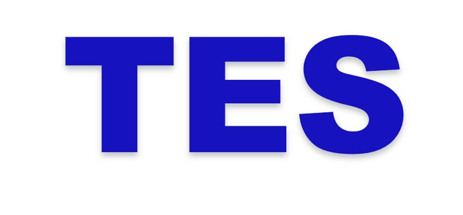 TES logo.PNG