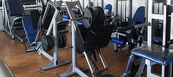 Muscula%C3%A7%C3%A3o%201_edited.jpg