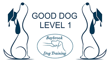 Good Dog level 1.png
