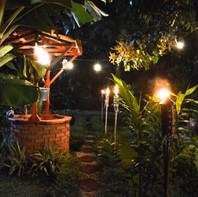 Jardin Nocturno