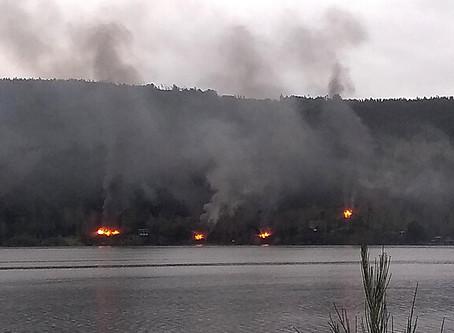 atentado incendiario en lago Lanalhue deja cuatro cabañas destruidas