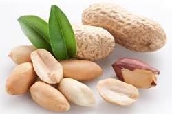 Cacahuates, fuente de proteína