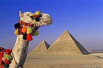 Around Pyramids camel trip_Travel Egypt tours