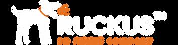 Ruckus---NEXT-SPOT.png