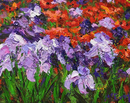 Poppies & Iris