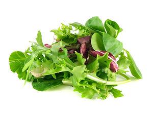 Salad mix with rucola, frisee, radicchio