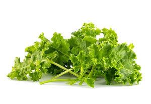 kale leafy vegetable closeup on white ba