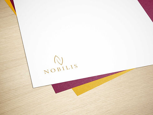 Nobolis_Logo_Mockup.jpg