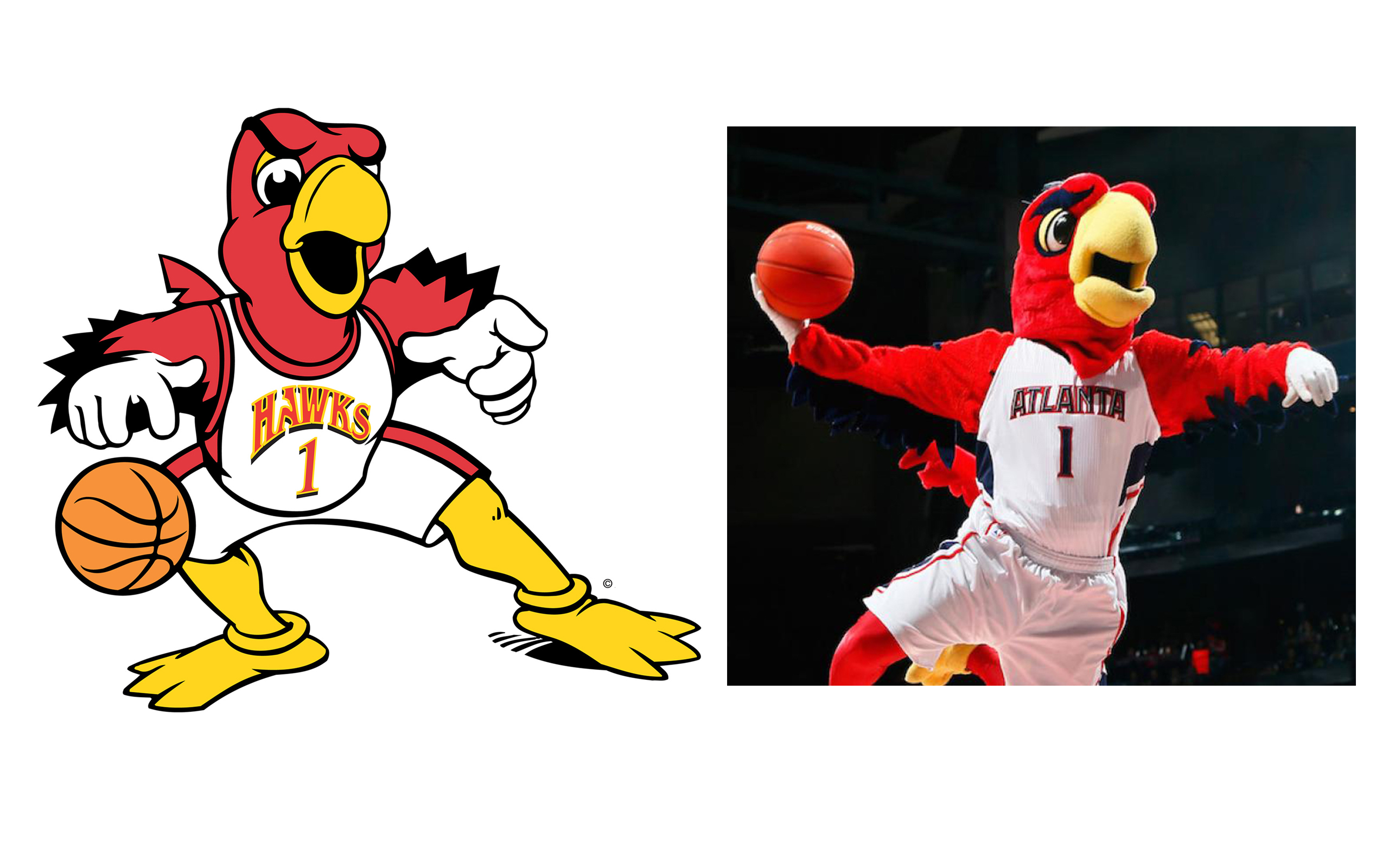 Harry Hawk - NBA Atlanta Hawks