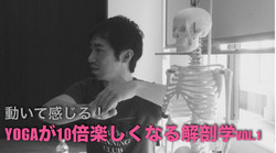 解剖学・ヨガ(ヨガが10倍楽しくなる)