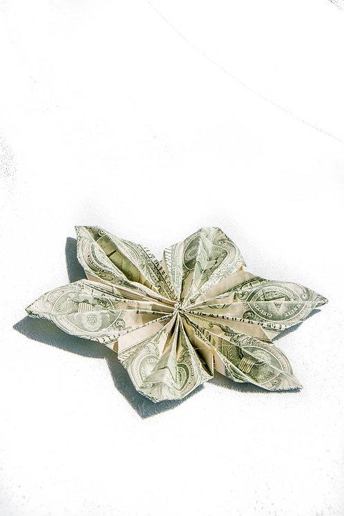 Money Flower Accessory