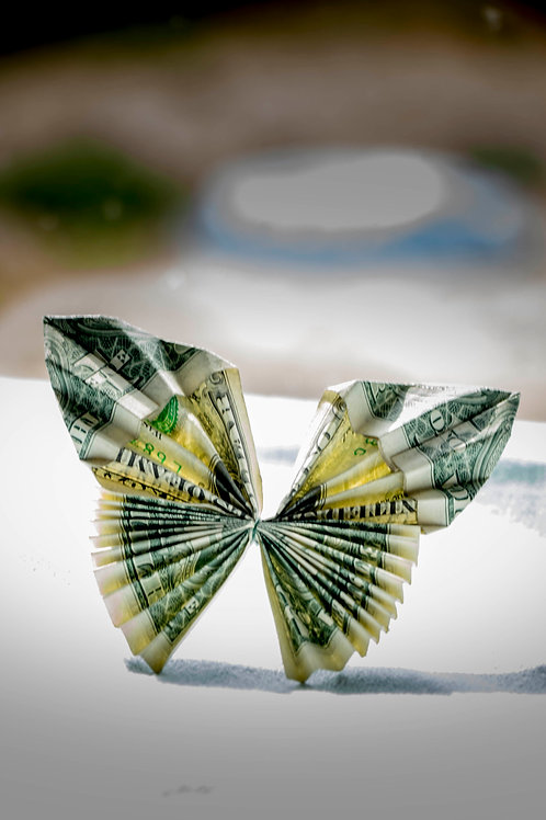 Money Butterfly Accessory
