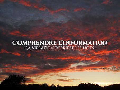 Comprendre l'information : la vibration derrière les mots