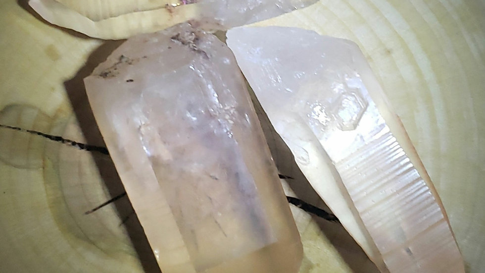 Champaign Lemurian Seed Crystal pt