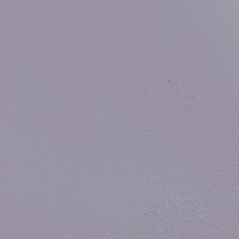 lilac wall.jpg