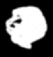 wild-lion-icon-logo-template-vector-2202