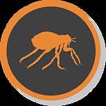 flea noshadow.png