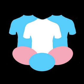 TGTH logo Trans pride