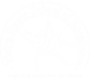 VDSE logo white.png