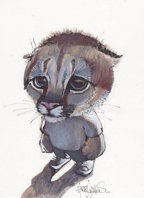 Bébé Puma - Original A5