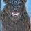 Thumbnail: Lion noir - Original