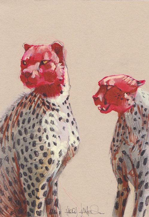 Guépards  têtes rouges - Original A5