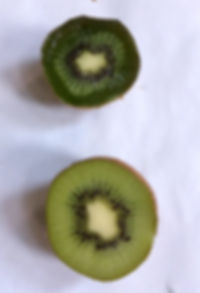 differenza kiwi con e senza quantum freebioenergy