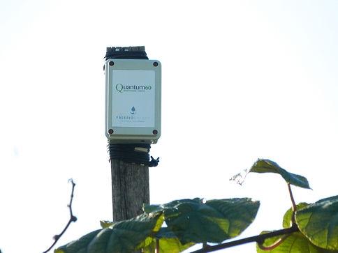 installazione quantum freebioenergy su kiwi