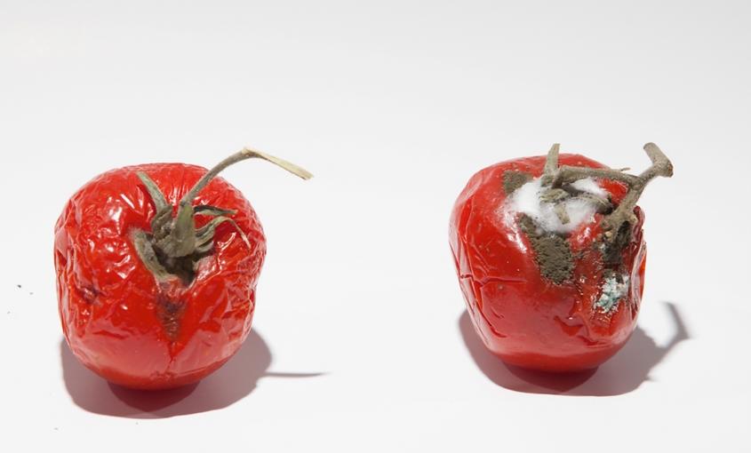 frutta con e senza quantum freebioenergy