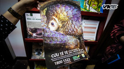 Inside the Global Underground Wildlife Trafficking Market