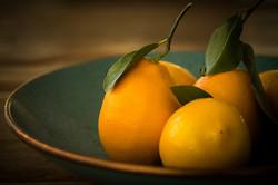 Lemons_Fruit_Foliage_456491