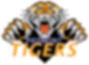 Tigers without blue background.jpg