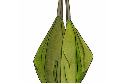 Village Bag