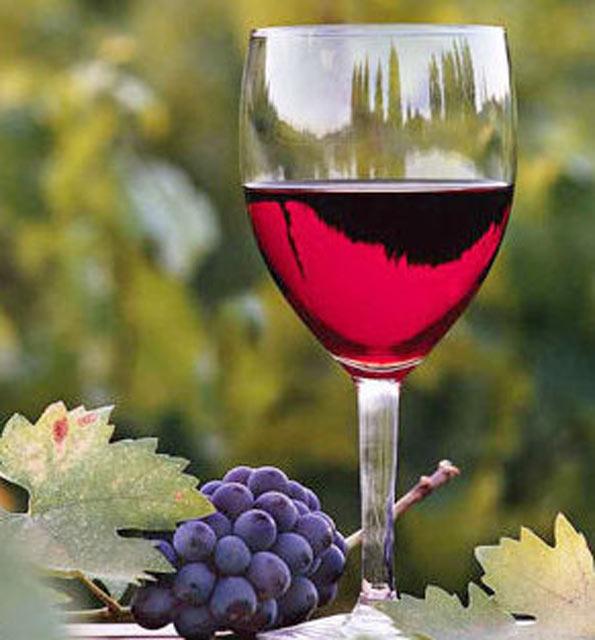 Wine-Route-2.jpg