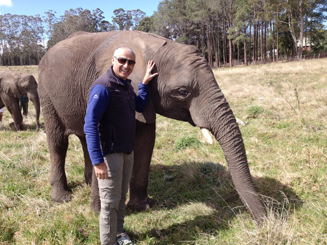 Knysna---Elephant-Sanctuary.jpg