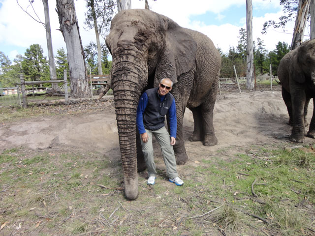 Knysna---Elephant-Sanctuary-3.jpg