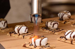 Torched Smores