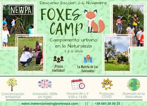 Campamento de día para el descanso escolar: Foxes Camp