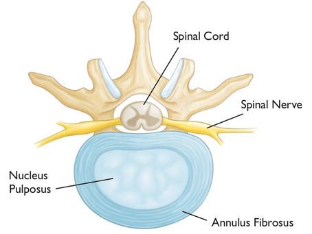 The Lumbar Spine Masterclass, Part 2