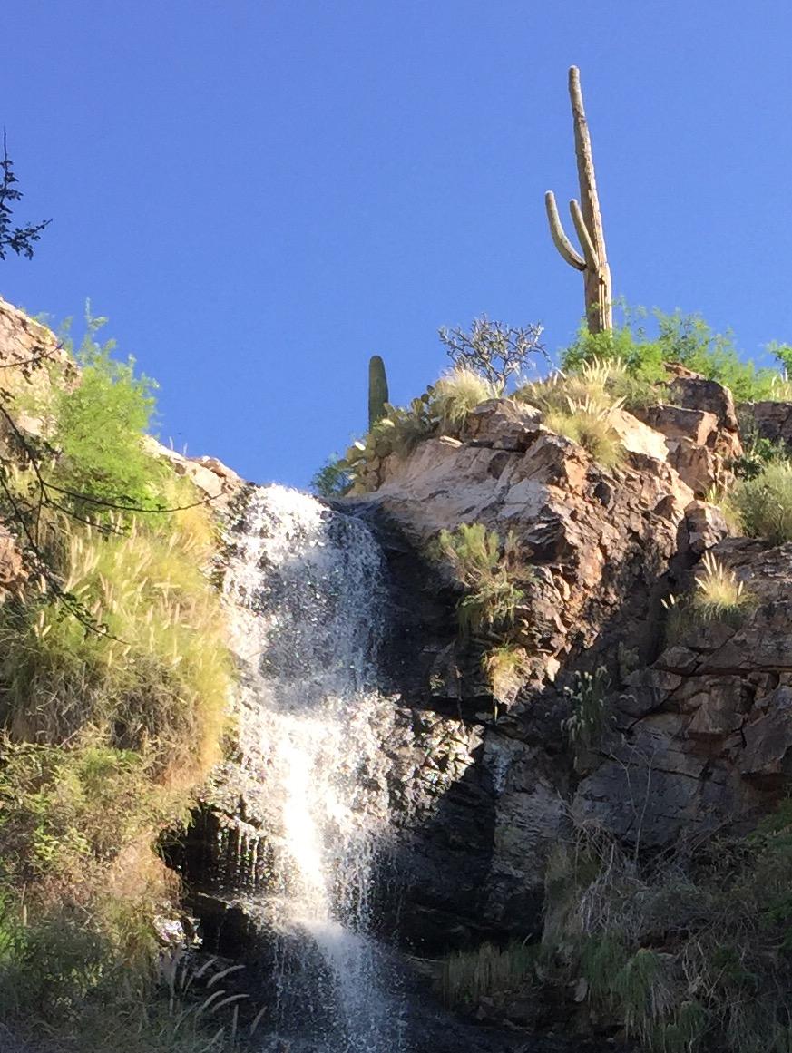 Ventana Canyon Falls