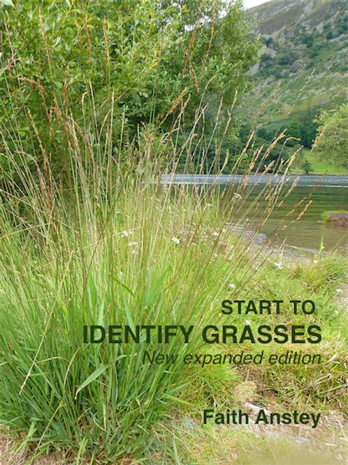 START TO IDENTIFY GRASSES