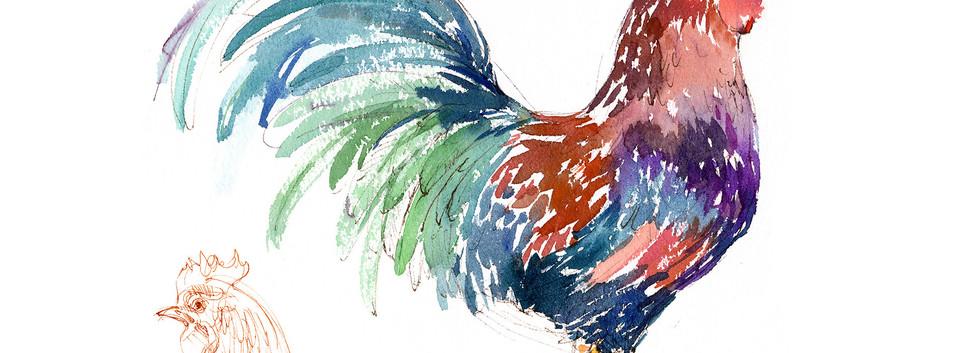 GF_rooster hawaiian.jpg
