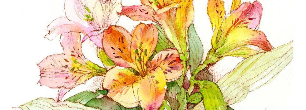 GF_pink lilies.jpg