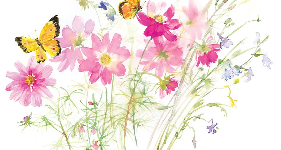GF_Cosmos Weeds butterflies REV.jpg