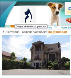 Clinique Vétérinaire du grand port