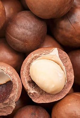 macadamia-nuts-1502128513-3196780.jpeg